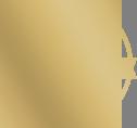 aeroclub home plane logo