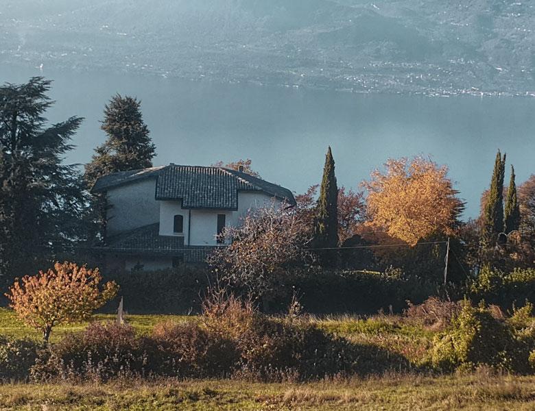 cottage2-cottages-pic1