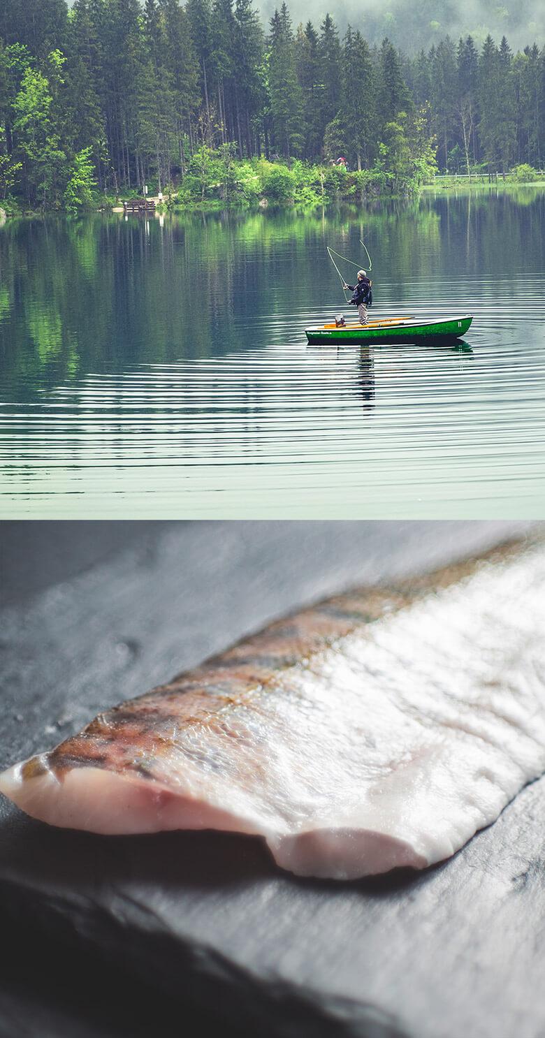 home_salmon_pic2